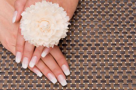 manicure Banque d'images