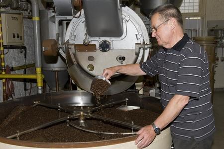 coffee plant: coffee