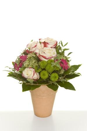 flowers Stock Photo - 12888329