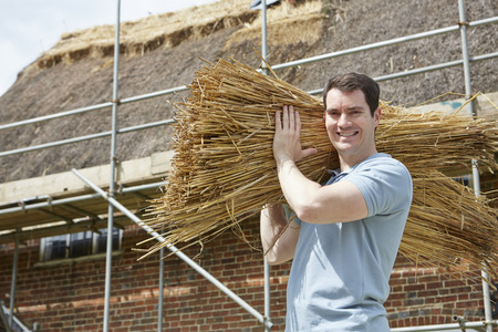 thatcher: Thatcher Carrying Bundles Of Reeds Working On Roof