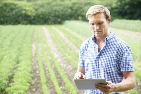 Farmer On Organic Farm Using Digital Tablet