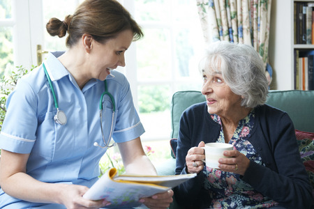 nursing record: Nurse Discussing Medical Notes With Senior Woman At Home