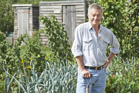 allotment: Portrait Of Man Gardening On Allotment