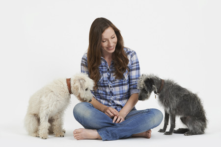 lurcher: Studio Shot Of Woman With Two Pet Lurcher Dogs Stock Photo