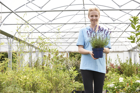 garden staff: Portrait Of Female Employee At Garden Center Holding Plant