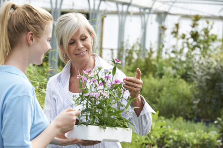 garden staff: Woman Asking Staff For Plant Advice At Garden Center Stock Photo