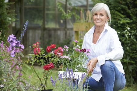 mujer rodillas: Retrato de la mujer madura Jardinería
