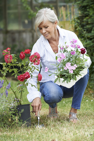 Volwassen vrouw het planten planten in de tuin