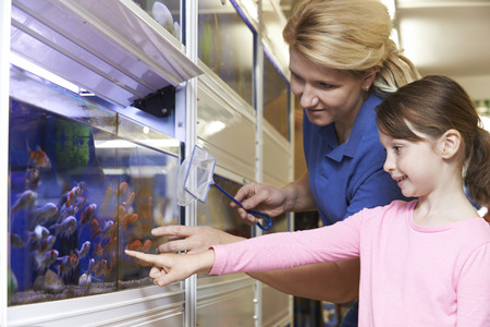 sales assistant: Girl With Sales Assistant Choosing Goldfish In Pet Store