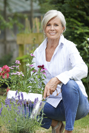 mature people: Portrait Of Mature Woman Gardening