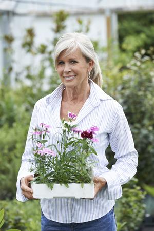 garden center: Mature Woman Choosing Plants At Garden Center