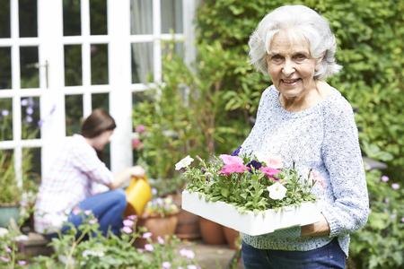 jardines con flores: Adolescente nieta Abuela de ayuda en jard�n