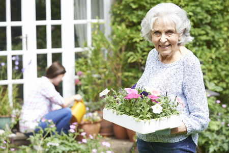 woman gardening: Teenage Granddaughter Helping Grandmother In Garden