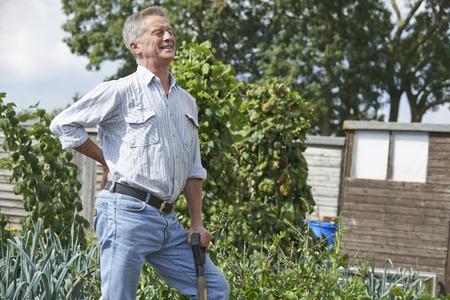 Senior man lijdt aan rugpijn Terwijl Tuinieren