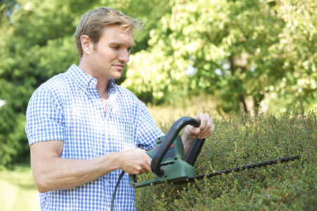 electric trimmer: Man Cutting Garden Hedge With Electric Trimmer