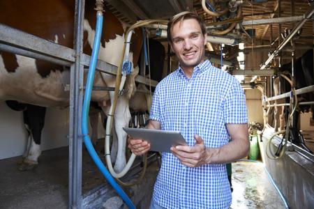 酪農搾乳小屋にデジタル タブレットを使用して