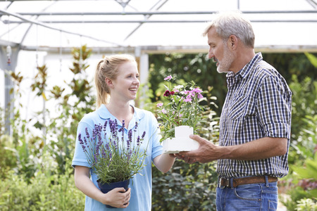 garden staff: Male Customer Asking Staff For Plant Advice At Garden Center