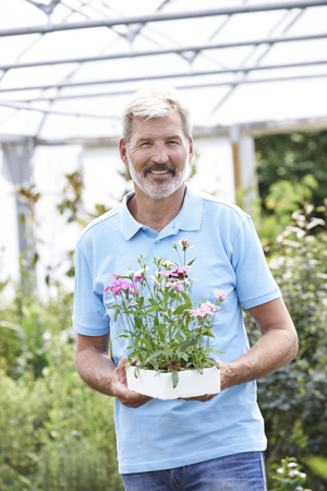 sales assistant: Portrait Of Male Sales Assistant At Garden Center Holding Plants