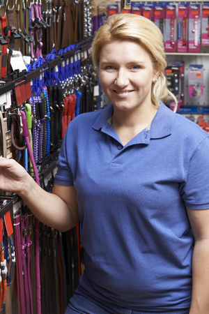 pet store: Sales Assistant In Pet Store With Display Of Dog Leashes