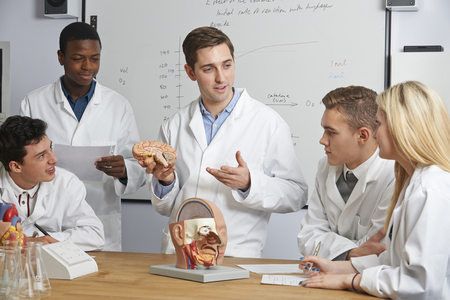 Teacher With Model Of Brain In Biology Class