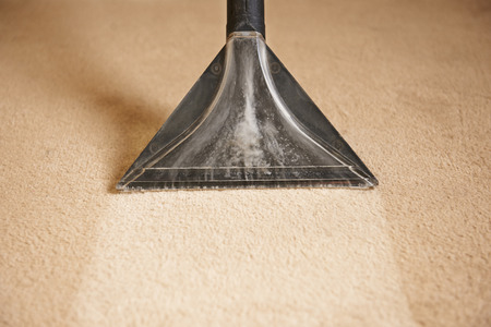 Professionally Cleaning Carpets 版權商用圖片 - 49045198