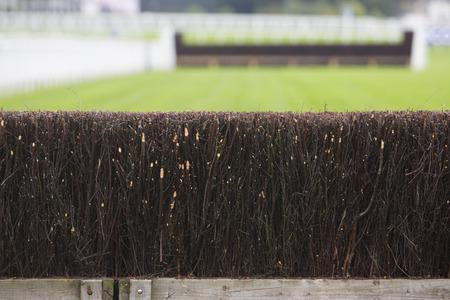 jumping fence: Valla en caballo de carreras de coches