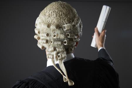 libel: Lawyer Making Speech In Court