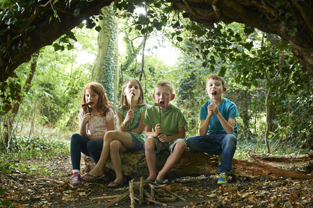 Group Of Children Eating Sausages In Woodland Camp Stock Photo