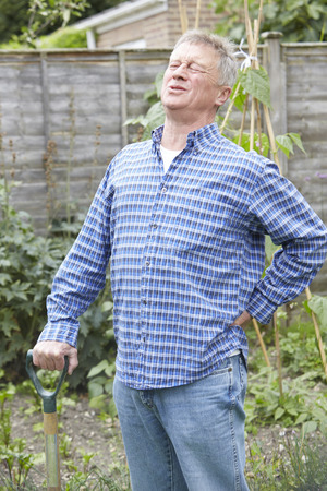 persons back: Hombre mayor que sufre de dolor de espalda Mientras Jardinería Foto de archivo