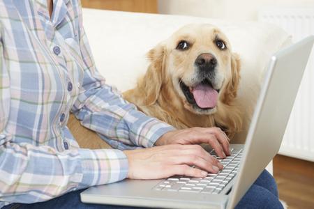 Chien assis à côté de Propriétaire Utiliser un ordinateur portable Banque d'images