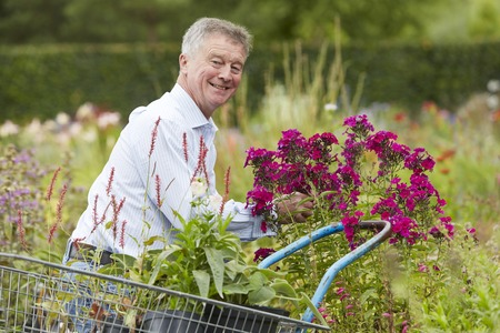 choosing: Man Choosing Plants At Garden Centre Stock Photo