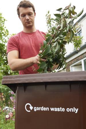 wheelie bin: Man Putting Garden Waste Into Recycling Bin Stock Photo
