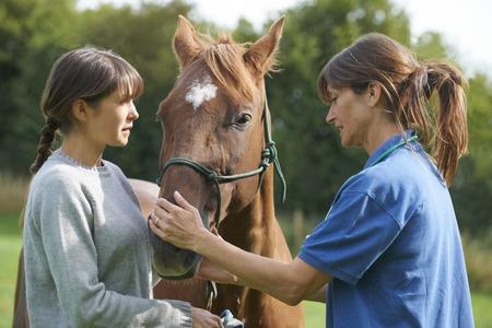 Vet Femme examen Cheval In Field avec le propriétaire