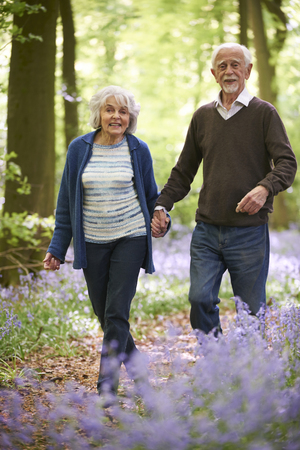bluebell: Senior Couple Walking Through Bluebell Wood