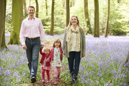 bluebell woods: Family Walking Through Bluebell Woods Together