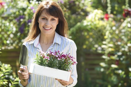 garden: Middle Aged Woman Planting Flowers In Garden