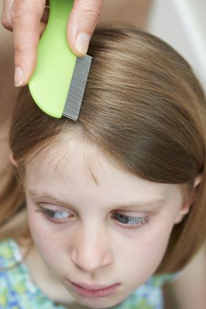 piojos: Comprobación de la madre Hijas de pelo para la cabeza Piojo Foto de archivo