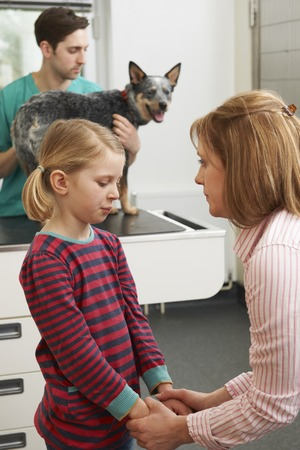heeler: Mother Comforting Girl As Vet Treats Sick Dog