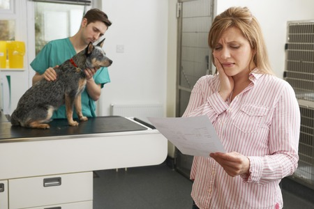 surgery expenses: Worried Woman Looking At Bill In Veterinary Surgery