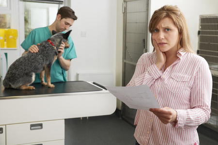 medical bill: Worried Woman Looking At Bill In Veterinary Surgery