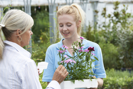 garden staff: Staff Giving Plant Advice To Female Customer At Garden Center