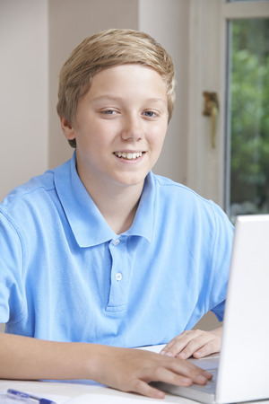 boy 12 year old: Portrait Of Boy Using Laptop At Home Stock Photo