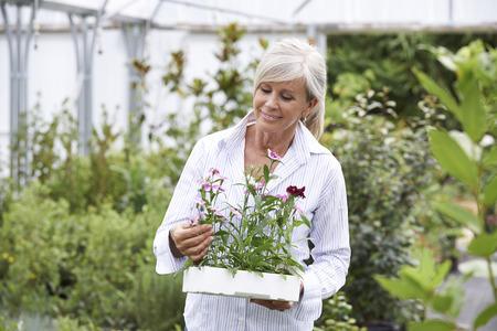 choosing: Mature Woman Choosing Plants At Garden Center