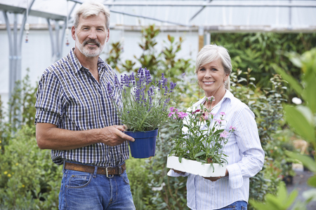 smiling woman in a greenhouse: Mature Couple Choosing Plants At Garden Center