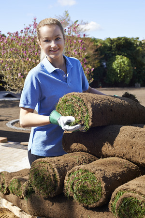 jardineros: Female Landscape Gardener Laying Turf For New Lawn