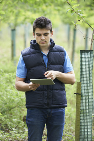 forestry: Forestry Worker With Digital Tablet Checking Young Trees