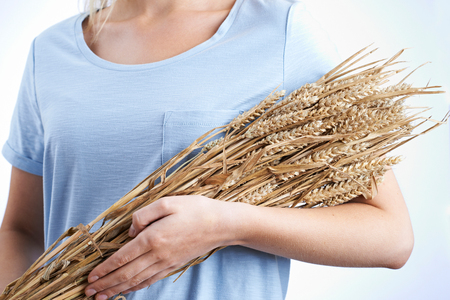 Close Up Of Woman Holding Bundle Of Wheat Stock Photo