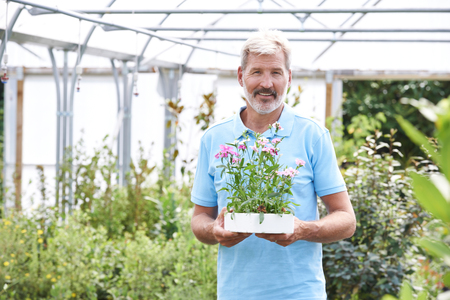 Portrait Of Male Employee At Garden Center Holding Plant
