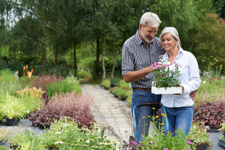 Mature Couple Shopping For Plants At Garden Center Banque d'images