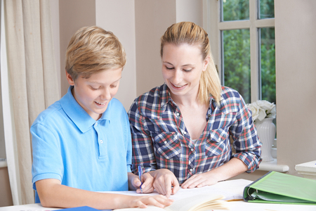 Female Home Tutor Helping Teenage Boy With Studies
